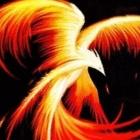 Avatar de typhoonftw