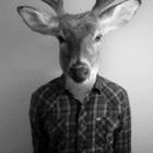 Avatar de ciervoboy