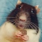 Avatar de RattenBach