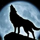 Avatar de otocrates
