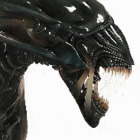 Avatar de SkorpioN