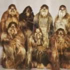 Avatar de Wookie