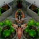 Avatar de okaso
