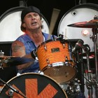 Avatar de chad.smith