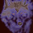Avatar de Sniper_Wolf